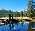 Dome View from Tuolumne River, Yosemite 8-10 (43681505360).jpg