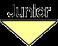 DownArrow Junior.png