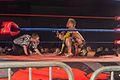 Dragon Gate USA @ WrestleReunion 4.jpg