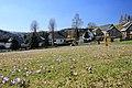 Drebacher Krokuswiesen..2H1A0043WI.jpg