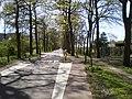 Driebergen Rijsenburgselaan in zuidelijke richting.jpg