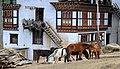 Drukgyel Dzong village in the Paro Valley - Bhutan - panoramio.jpg