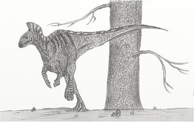 DryosaurusNV.jpg
