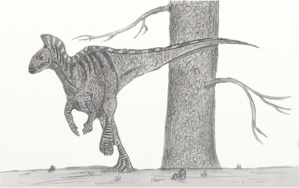 DryosaurusNV