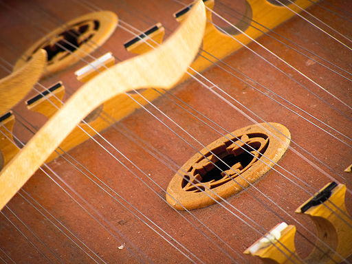 Dulcimer Strings (photo by Garry Knight)