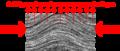 Dynamo metamorf sve text.png