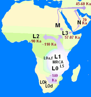 Out of Africa (Image via Wikipedia)