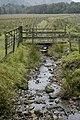 Eden Beck, Hartsop - geograph.org.uk - 983573.jpg