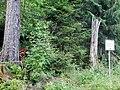 Ehemalige Havelsburg, Schriftliche Daten zu einer Havelsburg genannten Befestigungsanlage sind bisher nicht bekannt. Ein jüngerer Steinbruch dürfte evtl. vorhandene obertägig sichtbare Reste zerstört haben. Der Vol - panoramio.jpg