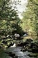 El Royo, río.jpg