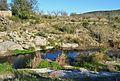 El riu Gorgos amb aigua, terme de Dénia.JPG