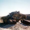 Eland60 camouflage1.PNG