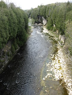 Grand River in der Elora Gorge