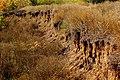 Erosion - panoramio.jpg