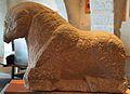 Escultura de toro sentado de época ibérica (3) - Museu Històric de Sagunt.jpg