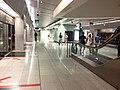 Esplanade MRT platform.jpeg