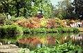 Exbury Garden Pond - geograph.org.uk - 779035.jpg