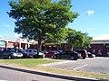 Exeter , Marsh Barton Retail Park - geograph.org.uk - 1234521.jpg