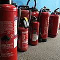 Extinguishers with cubs IMG 4848.JPG