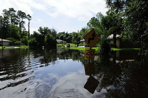 FEMA - 37615 - Community flooded by Tropical Storm Fay in Florida