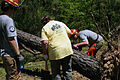 FEMA - 44107 - AmeriCorps and Other Volunteers Cut and Remove Debris in MS.jpg