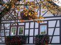 Fachwerkhaus mit Blumen und Herbstblättern.JPG