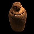 Falcon-headed canopic jar-MBA Lyon H1410-IMG 0504.jpg