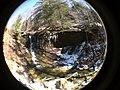 Fall Run Park in Shaler Township, late winter - 3.jpeg