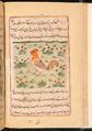 Faraḥ nāmah 082.png