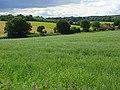 Farmland, Newton Tony - geograph.org.uk - 483982.jpg
