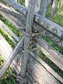 Fence twig.JPG
