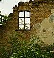 Fenster mit einem grünen Zweig - panoramio.jpg