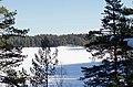 Finland National park Repovesi - panoramio.jpg