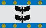 Flag of La Reina.png