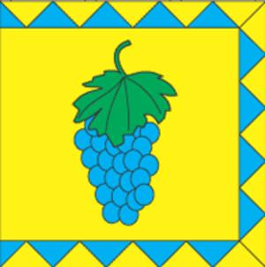 Vynnyky - Image: Flag of Vynnyky