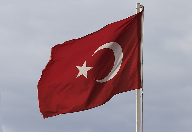 Президент Турции удтвердил международные соглашения с 9 странами мира