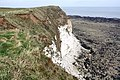 Flamborough Cliffs - geograph.org.uk - 1227511.jpg