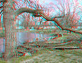 Flickr - jimf0390 - JimF 04-01-10-0035a driftwood from the flood on the Raccoon river Sac City, IA.jpg