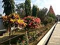 Flower 24 HDR.jpg
