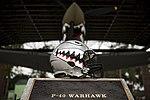 Flying Tigers helmet 161229-F-NI493-001.jpg