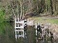 Fonthill Lake - geograph.org.uk - 1737884.jpg