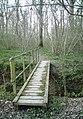 Footbridge in Widehurst Wood - geograph.org.uk - 1238269.jpg