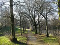 Footpath in Rhymney Park - geograph.org.uk - 1119743.jpg