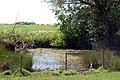 Footpath north from Whitehall Farm (4) - geograph.org.uk - 1324542.jpg
