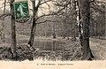 Forêt et étang de Trivaux, Meudon.jpg