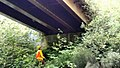 Forest engineers inspecting bridges - Olympic National Forest - September 2017 01.jpg