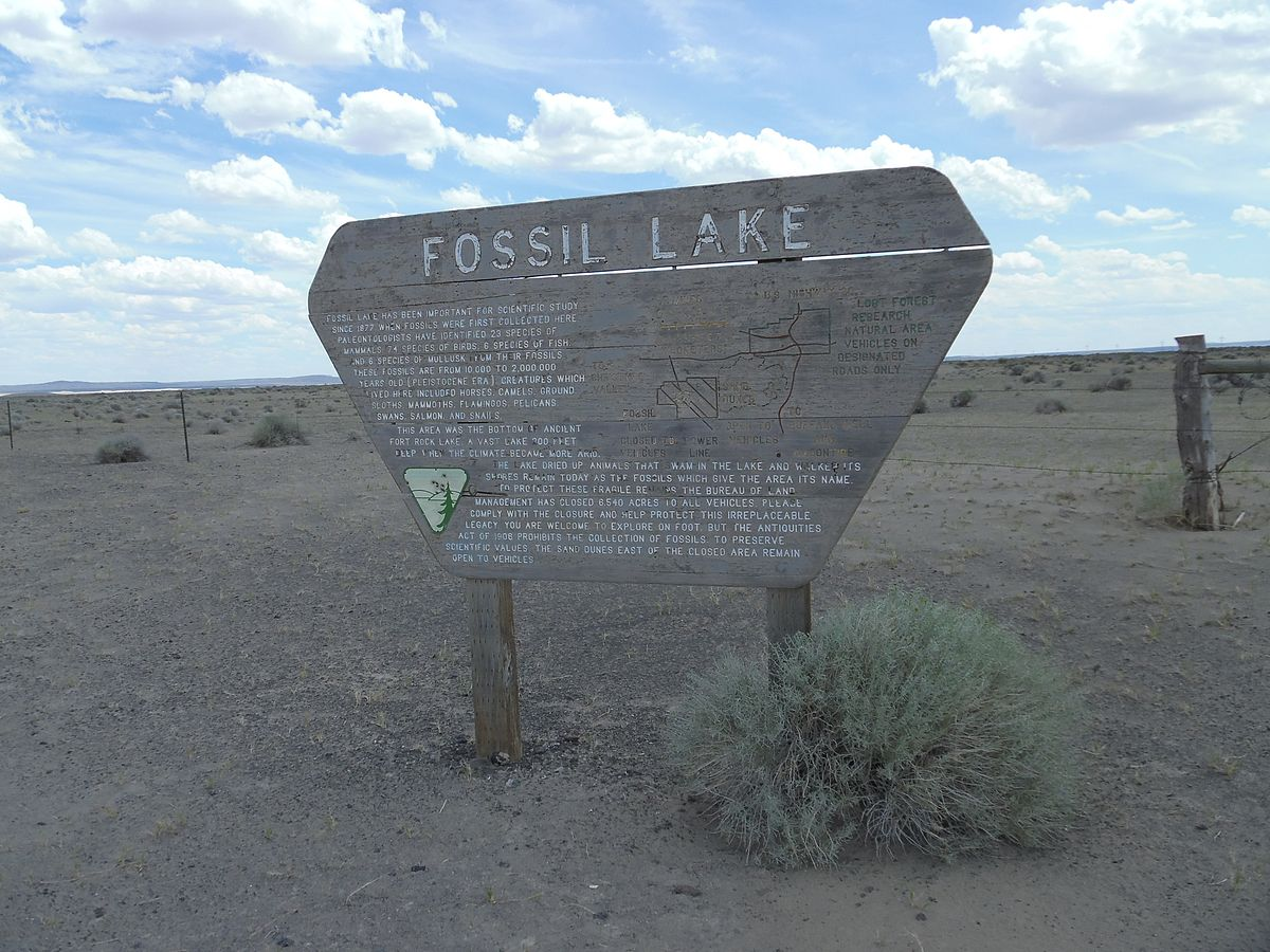Fossil Lake (Oregon) - Wikipedia