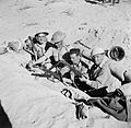 Four men of the 51st (Highland) Division dug in near El Alamein, 27 October 1942. E18625.jpg
