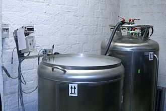 International Moss Stock Center - Cryopreservation container connected with a tank full of liquid nitrogen for automatic supply of liquid nitrogen. The container temperature is monitored by a computer-based program.