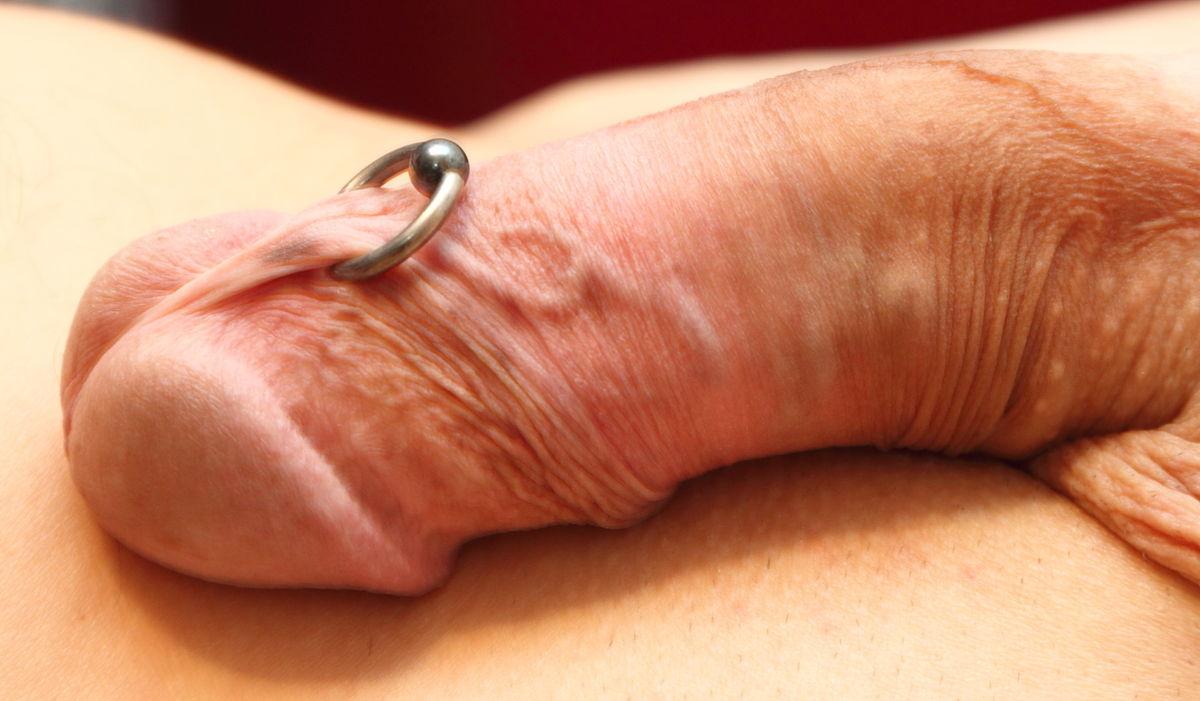 penes perforados